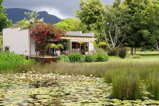 Lily Pond Country Lodge: Perfect