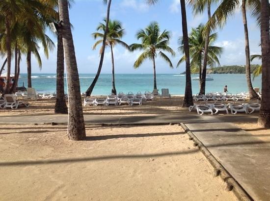 Club Med La Caravelle: Belle plage