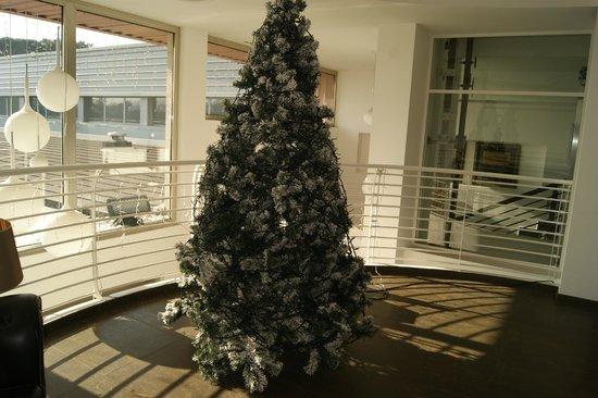 JC Contemporary Hotel: l'albero  di natale