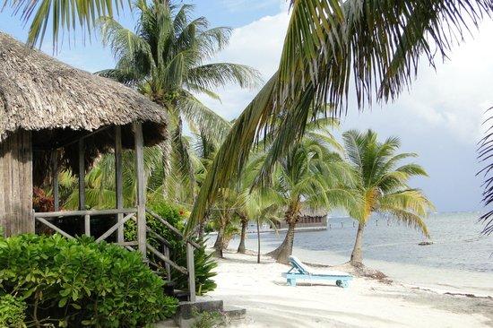 Captain Morgan's Retreat: Beautiful beach