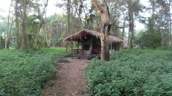 Migunga Tented Camp: a great getaway