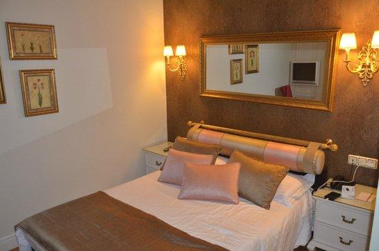 Avicenna Hotel : Oda