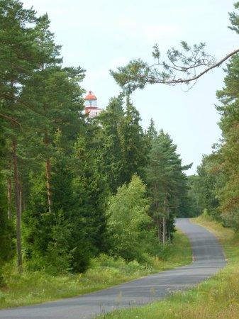 Kopu Lighthouse: маяк в лесу