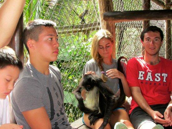 The Jungle Place - Tours: 2