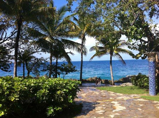 Casa Marina Beach & Reef: Le site