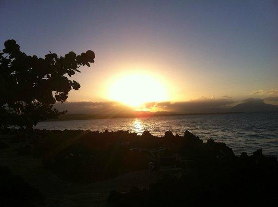 Casa Marina Reef: Coucher du soleil