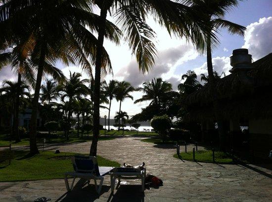 Casa Marina Reef: Le site