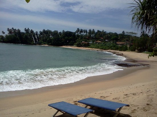 Turtle Landing Restaurant: Вид на океан из  ресторана