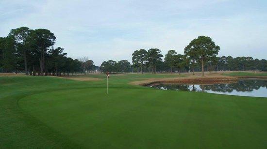 PineHills & Palmetto at Myrtlewood Golf Club: Pinehill #7