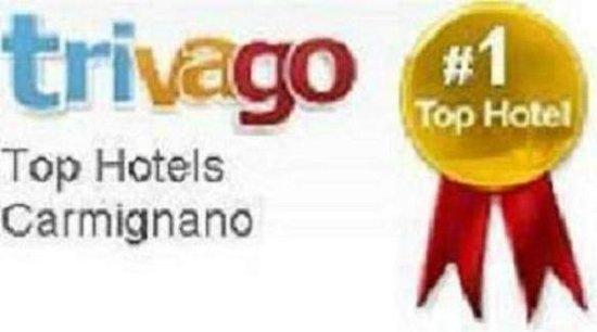 Hotel Villa San Michele: Certificato TopHotels Trivago
