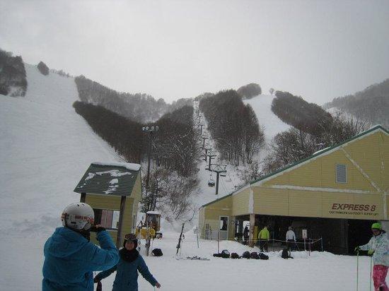 White World Oze Iwakura : 尾瀬岩倉の40度の壁を仰ぎ見る
