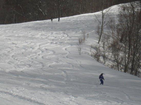 White World Oze Iwakura : ぶなの木コースの深雪にシュプールを描く