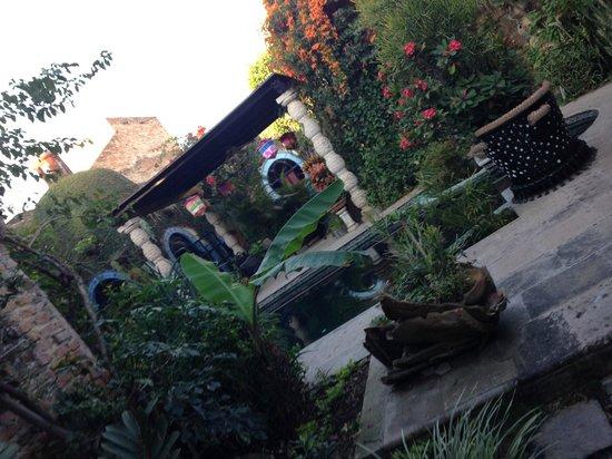 Las Sabilas : The pergola
