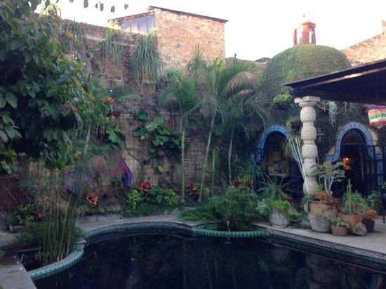 Las Sabilas: Garden