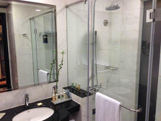 Radisson Blu Hotel, Dubai Media City: Rain shower-head