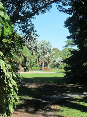 Fairchild Tropical Botanic Garden: A lovely sunny day