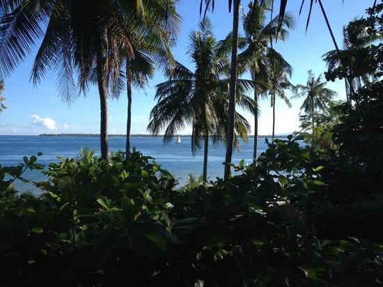 Pura Vida Cabilao: Blick von den Deluxe Zimmern Richtung Bohol