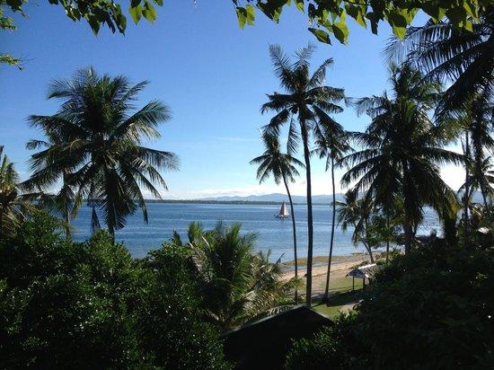 Pura Vida Cabilao: Blick vom Restaurant auf den Strand vor der Tauchbasis