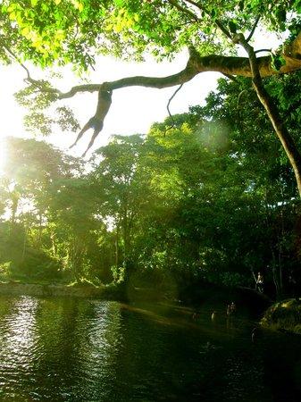 Omshanty : El Rio Takana (a 10 min del hotel)