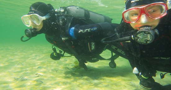 Padi Dive Center Nicedive4u