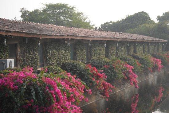 Shikarbadi: deluxe rooms
