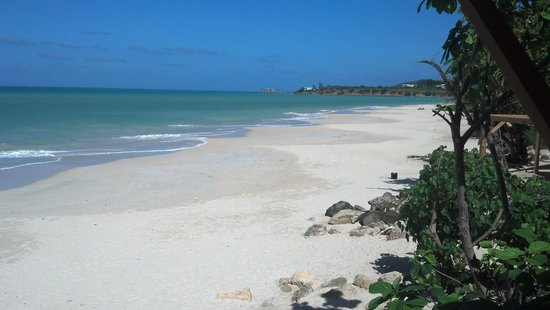 Beachlimerz : beautiful beach