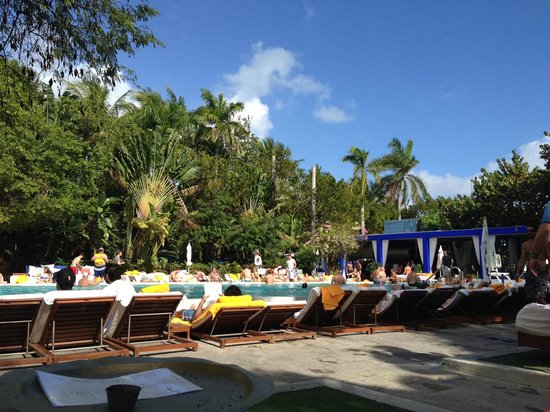 Shore Club South Beach Hotel: Pool View From Couches