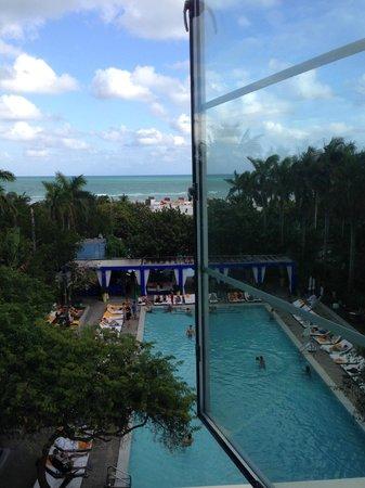 Shore Club South Beach Hotel: Pool/Beach View From Room