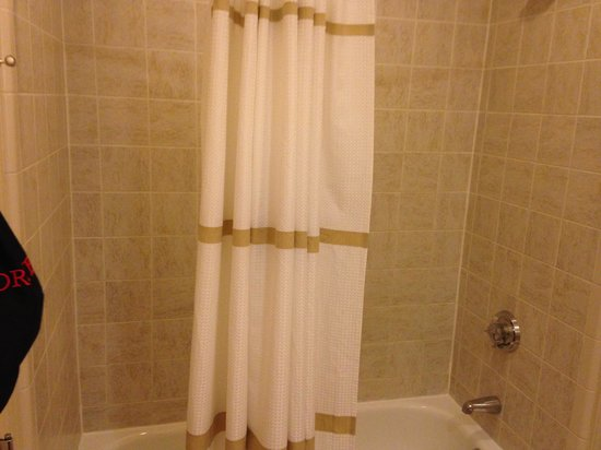 Dallas/Plano Marriott at Legacy Town Center : shower