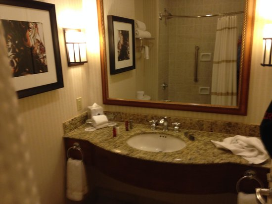 Dallas/Plano Marriott At Legacy Town Center: bathroom