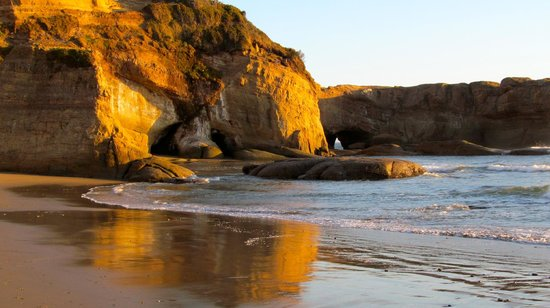 Inn at Otter Crest : Secluded beach next to property.