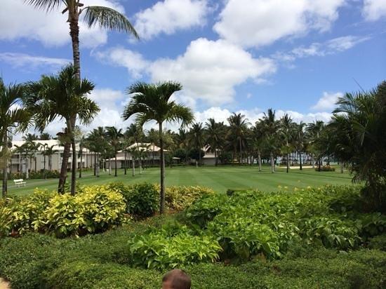 Sugar Beach Golf & Spa Resort: Jardins de l'hôtel, très bien entretenus