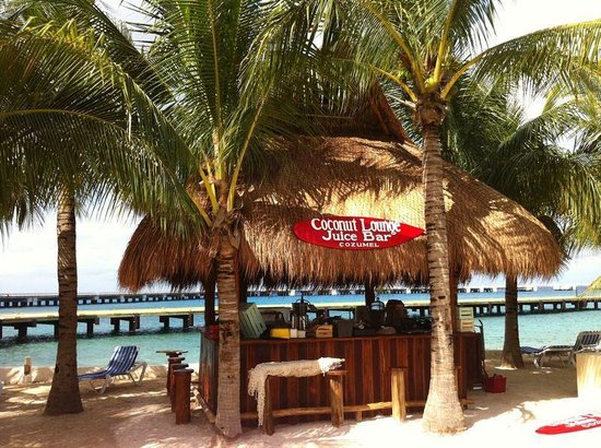 Coconut Lounge Juice Bar Cozumel Restaurant Reviews