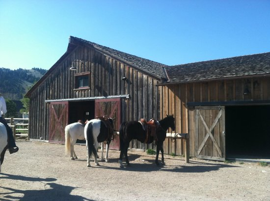 The Ranch at Rock Creek: Barn for Riding; Available Every Day