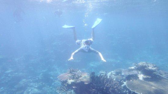 Oyster Island Resort: Snorkelling around the Island