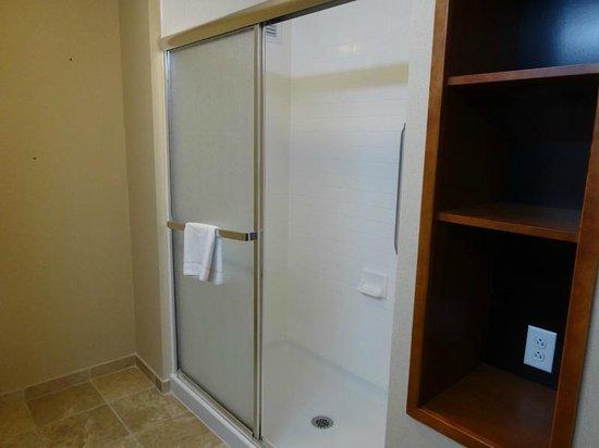 Hampton Inn & Suites Mystic: Large shower