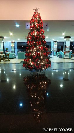 Blue Tree Park Lins: Um feliz natal aos clientes