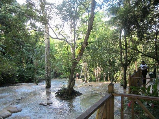 Dunn's River Falls and Park: Falls 7