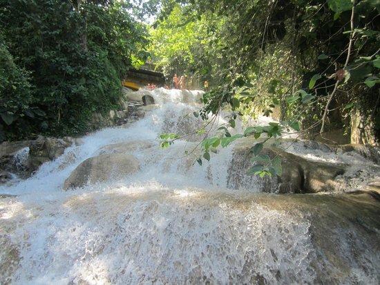Dunn's River Falls and Park: Falls