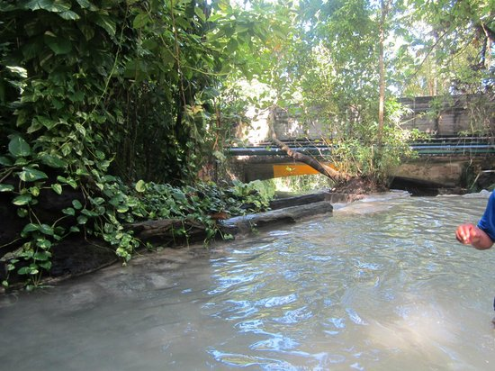 Dunn's River Falls and Park: Water
