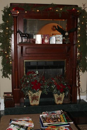 Southern Grace Bed and Breakfast : beautiful old fireplace with original glass