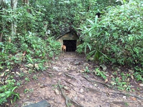 Belize Nature Travel: Cave entrance is hidden in the jungle