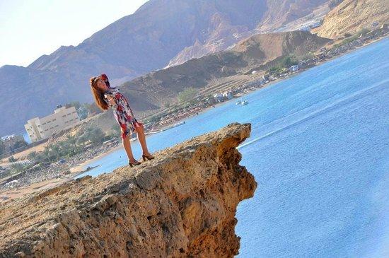 Beach Albatros Sharm: вид на бухту