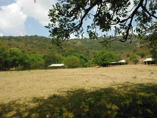 Enkewa Camp: mara camp