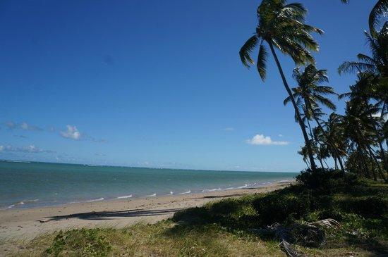 Praia do Patacho: Vista deslumbrante da praia Patacho