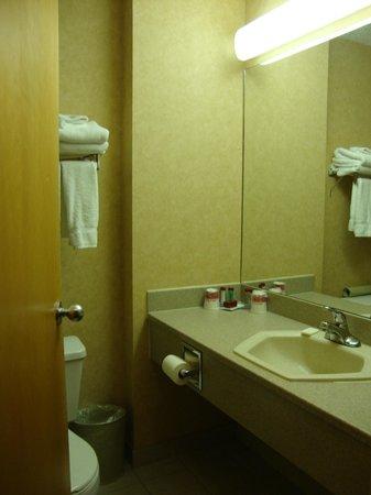 Ramada Canmore : Banheiro