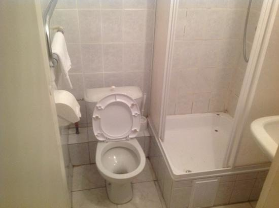 Zolotaya Dolina : душ и туалет