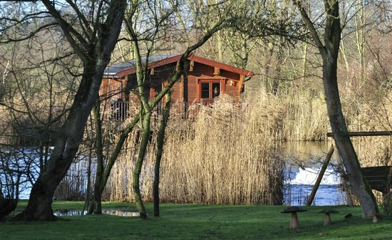 Badwell Ash Holiday Lodges: Woodpecker Lodge from across the lake