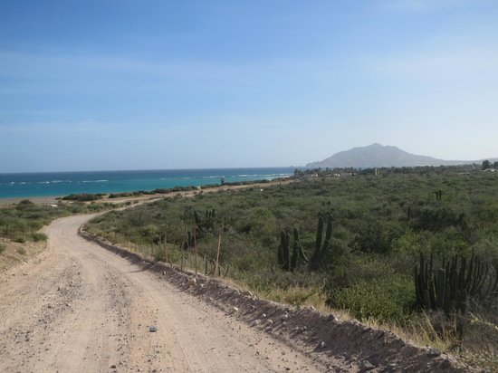 Baja Bungalows: the road in