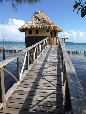 Thatch Caye Resort : My Cabana